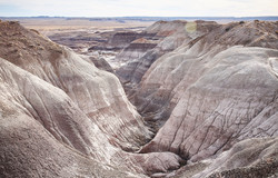 Petrified Forest - 58