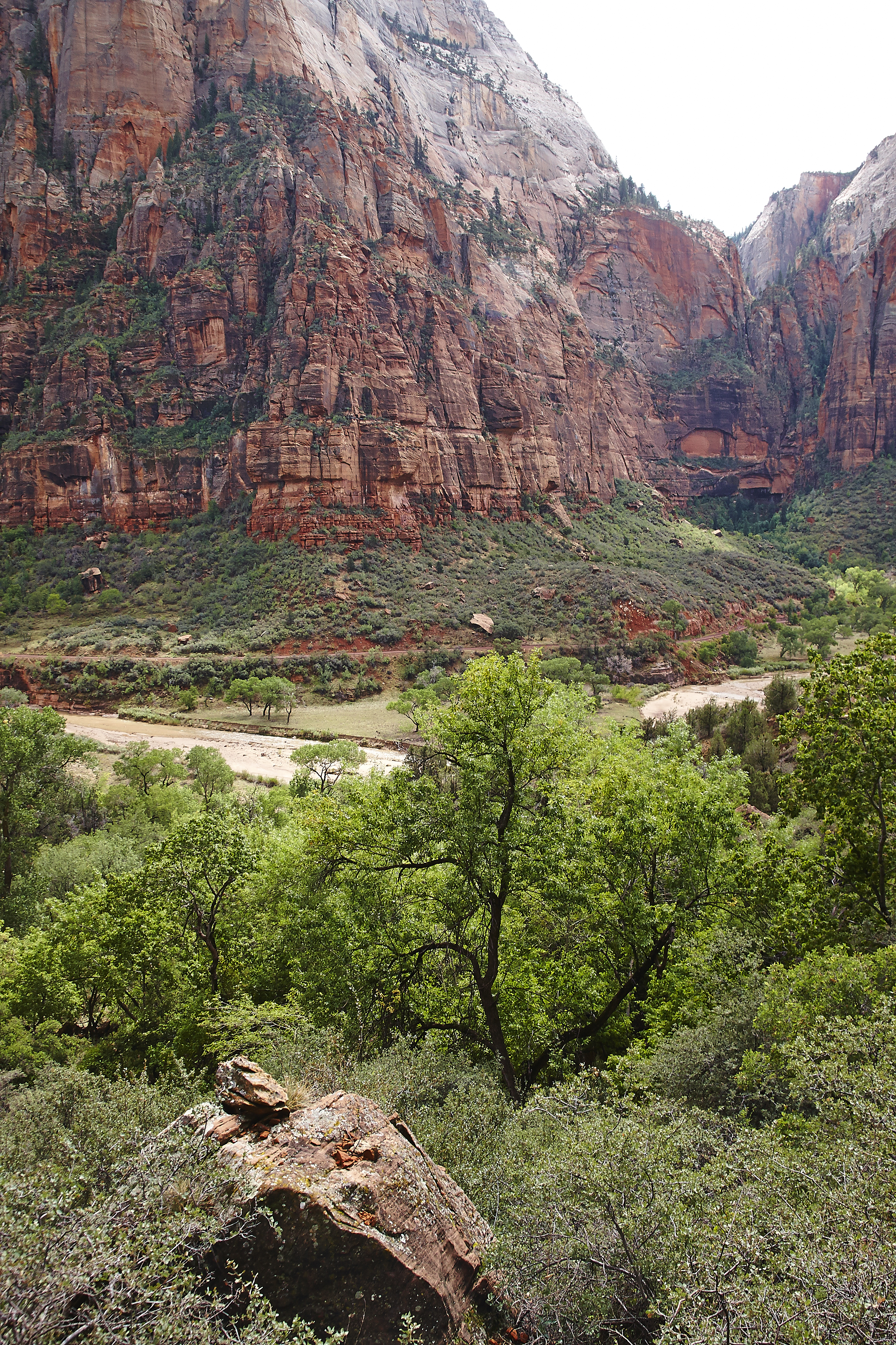 Zion National Park_006