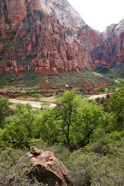 Zion National Park_006