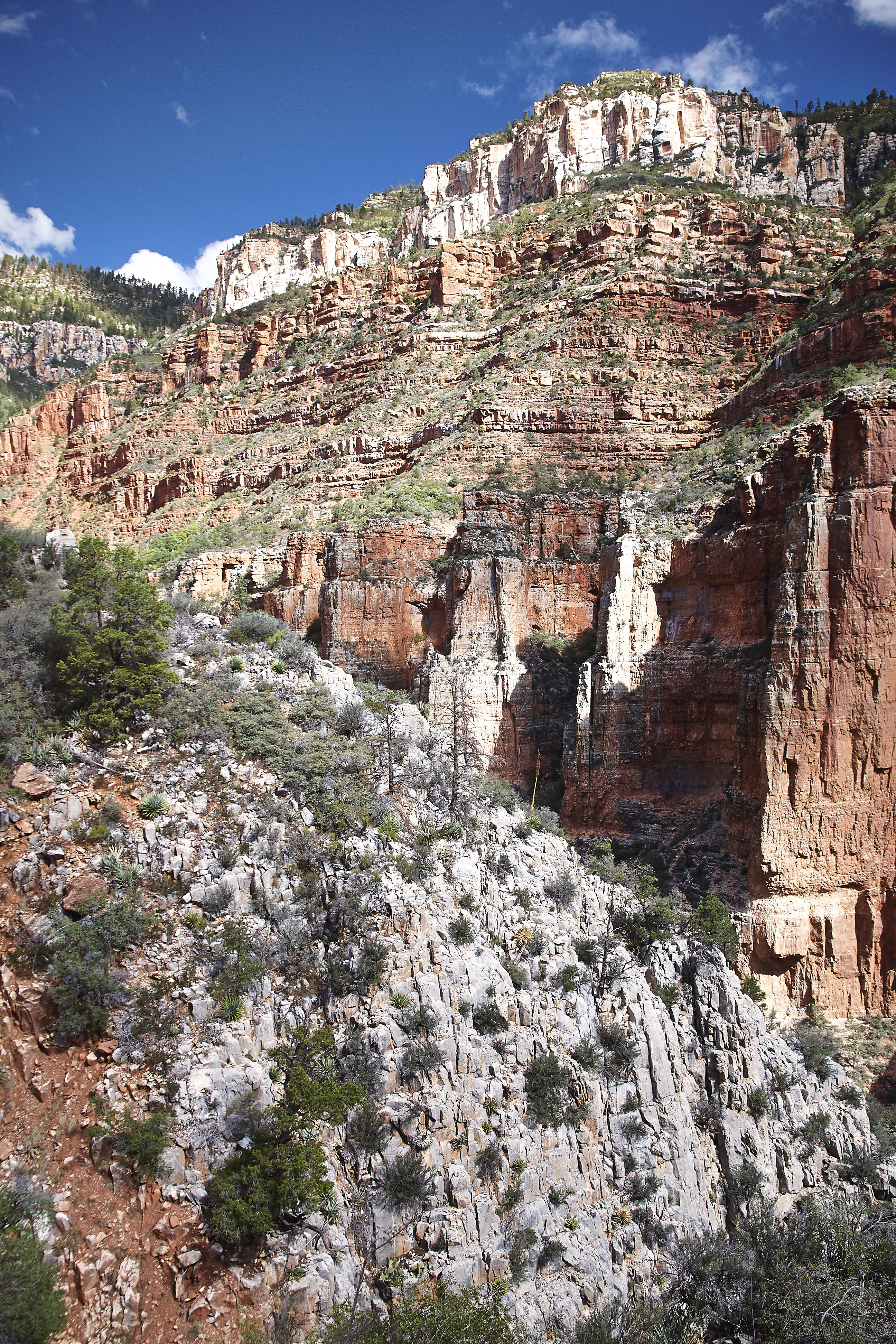Grand Canyon_228