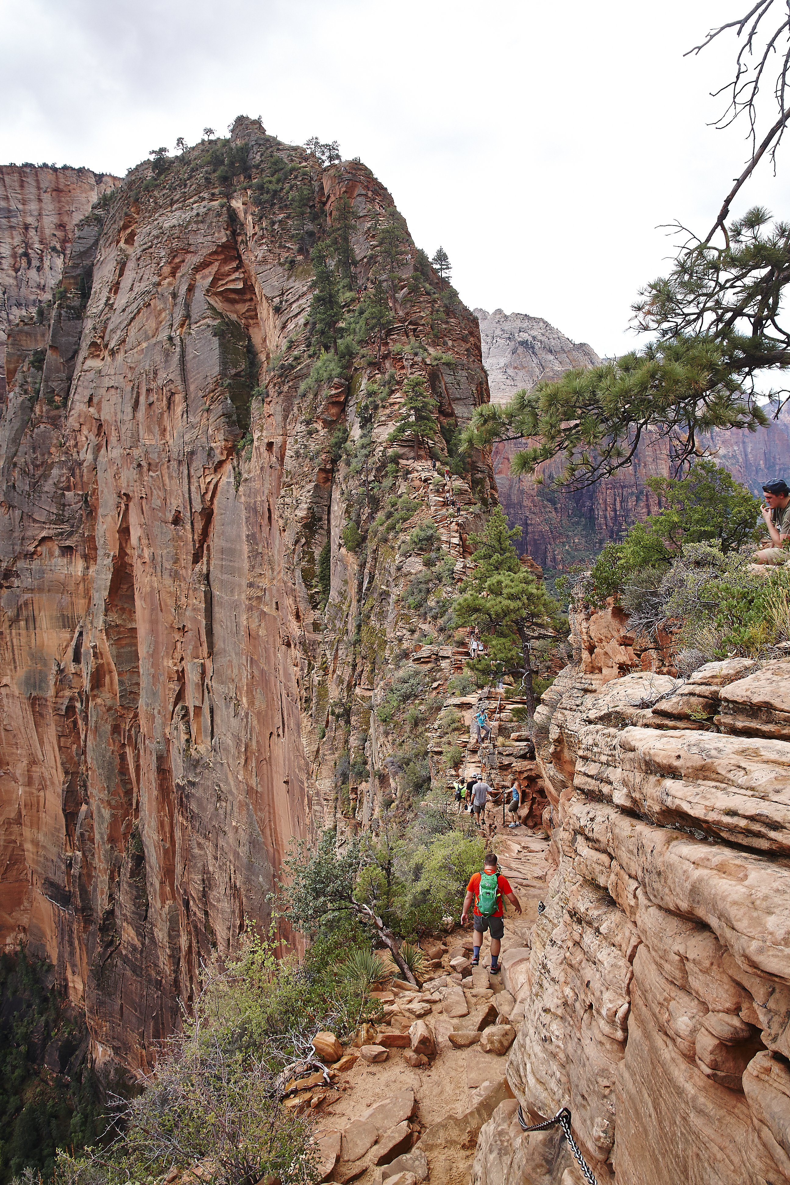 Zion National Park_017