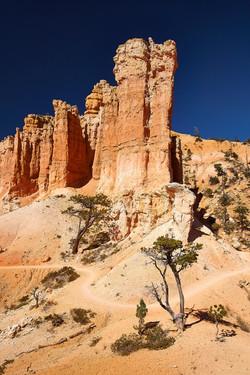Bryce Canyon_257