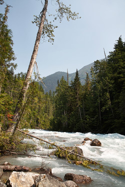 Mount Robson National Park__092