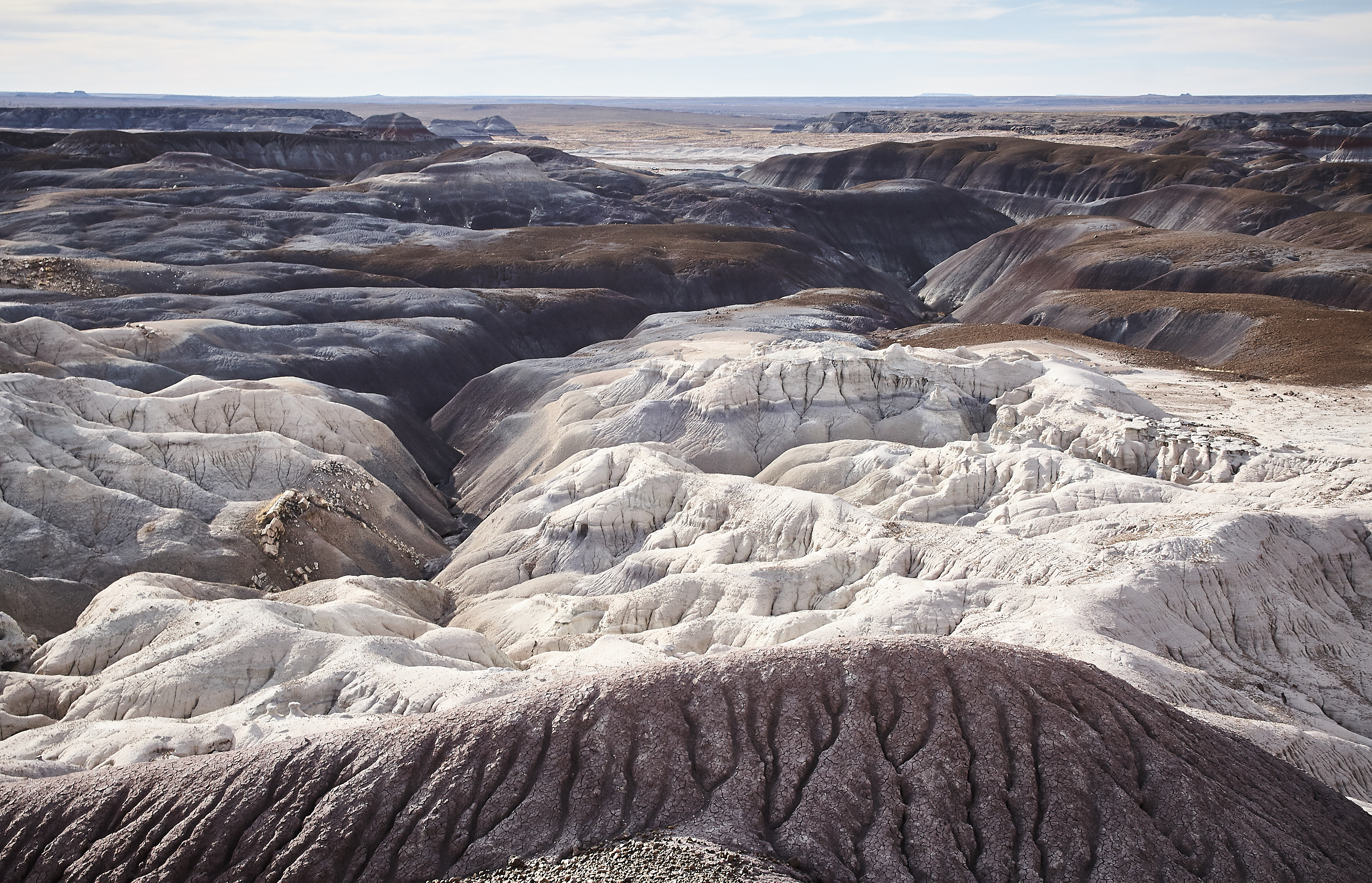 Petrified Forest - 67