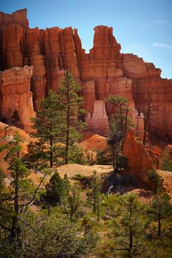 Bryce Canyon_229