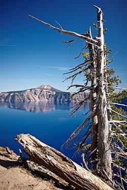 Crater Lake National Park_435