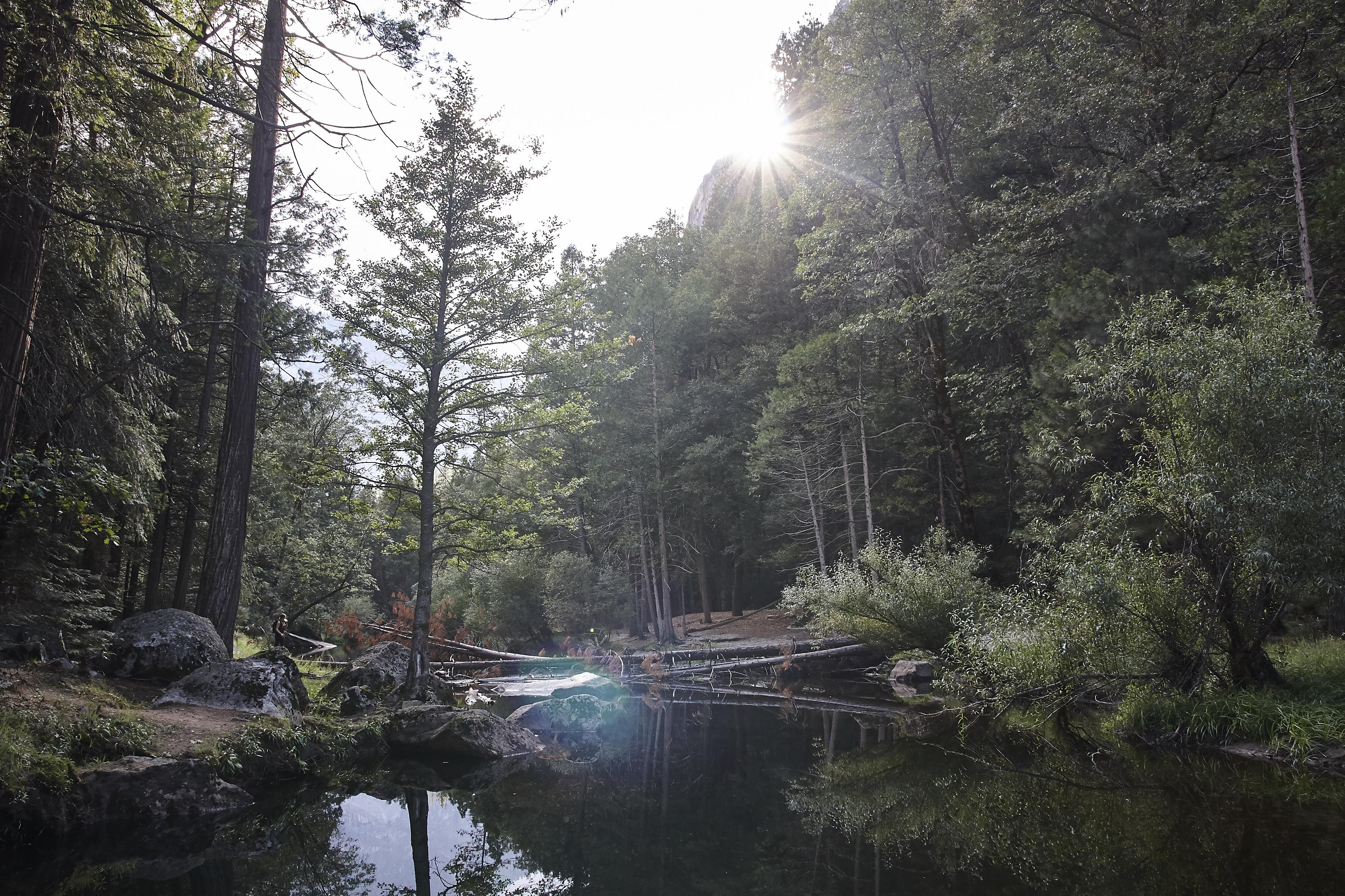 Yosemite 2017 - 44