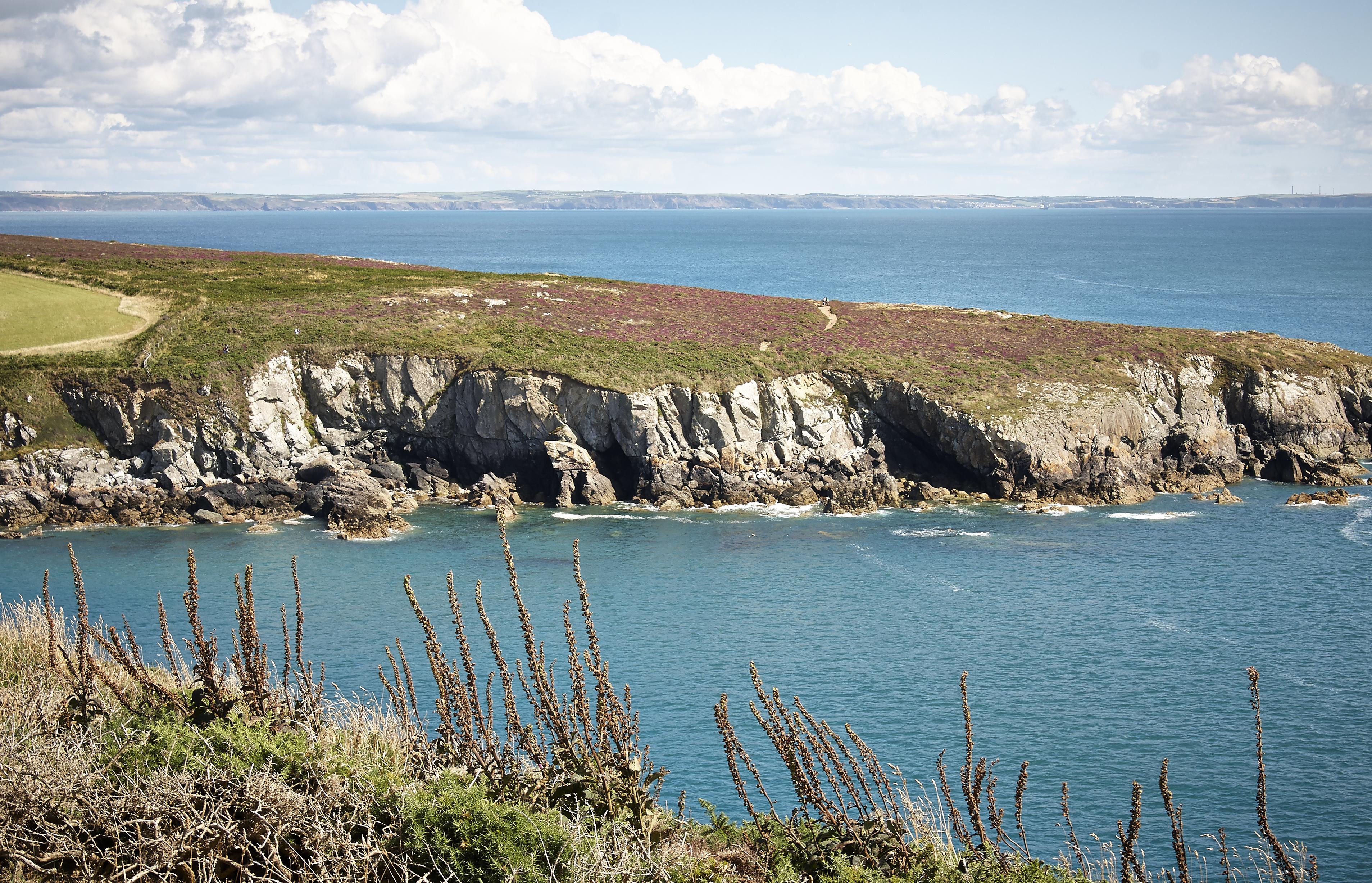 Pembrokeshire - 085