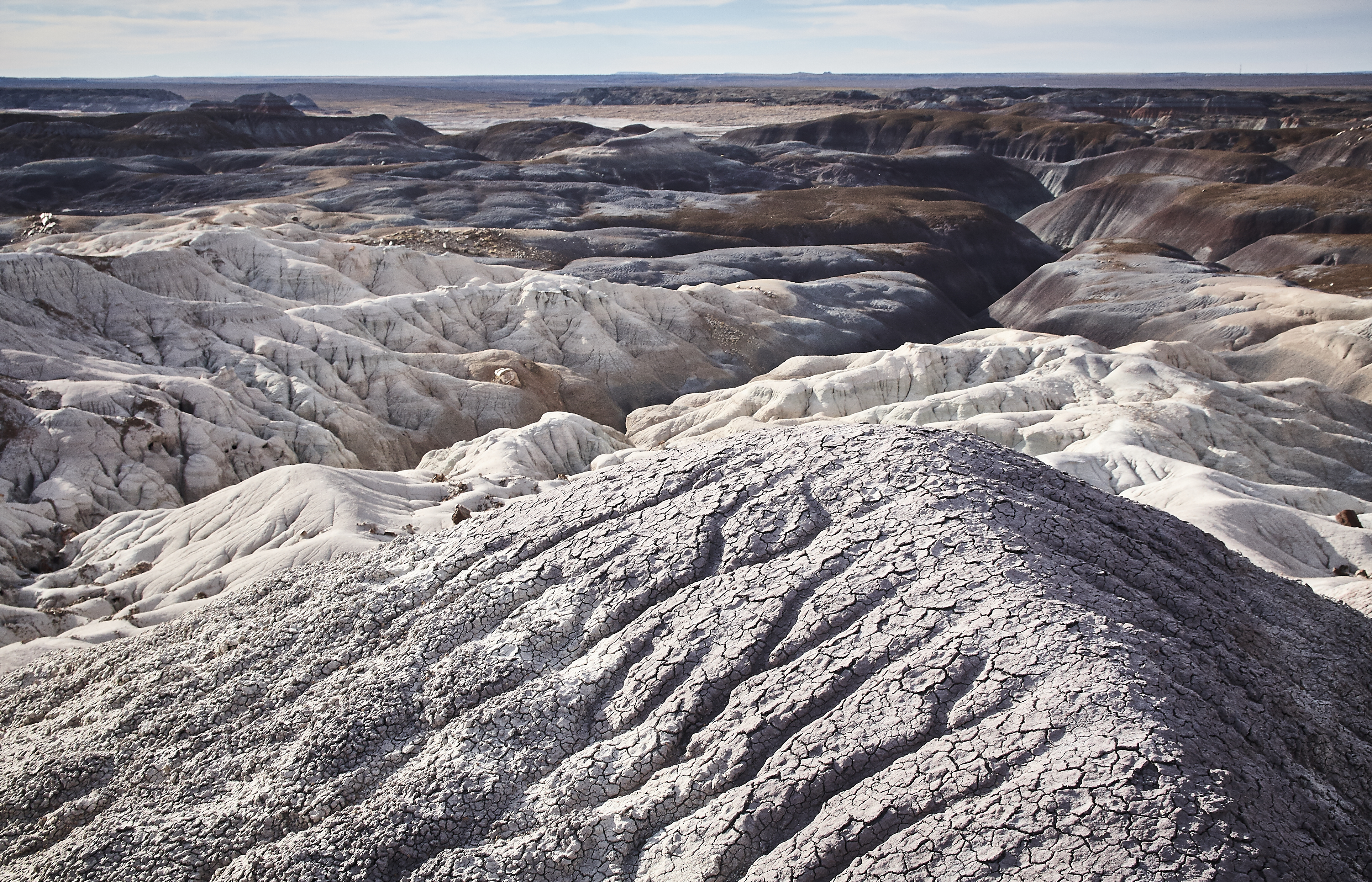 Petrified Forest - 71