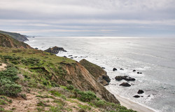 Tomales Point - 006