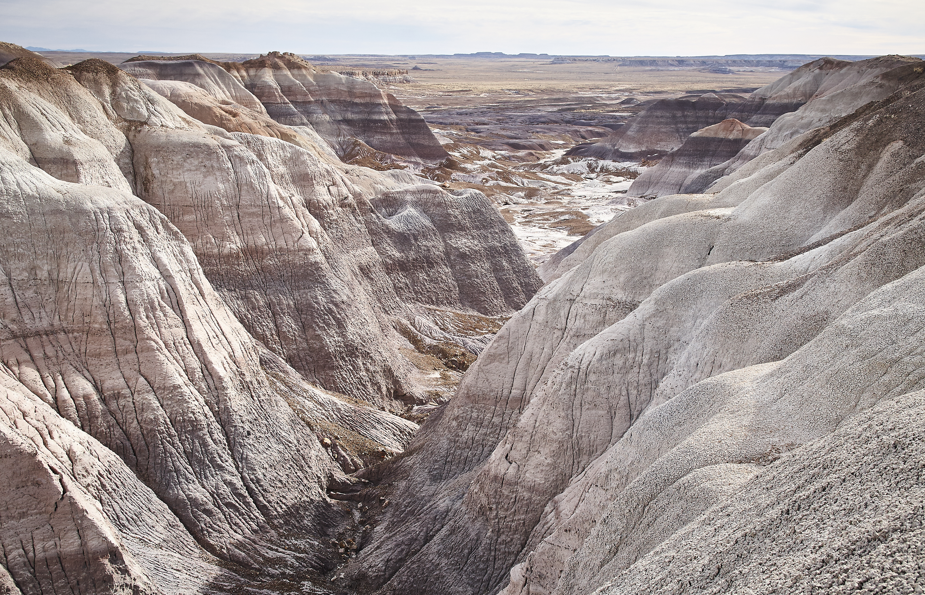 Petrified Forest - 48