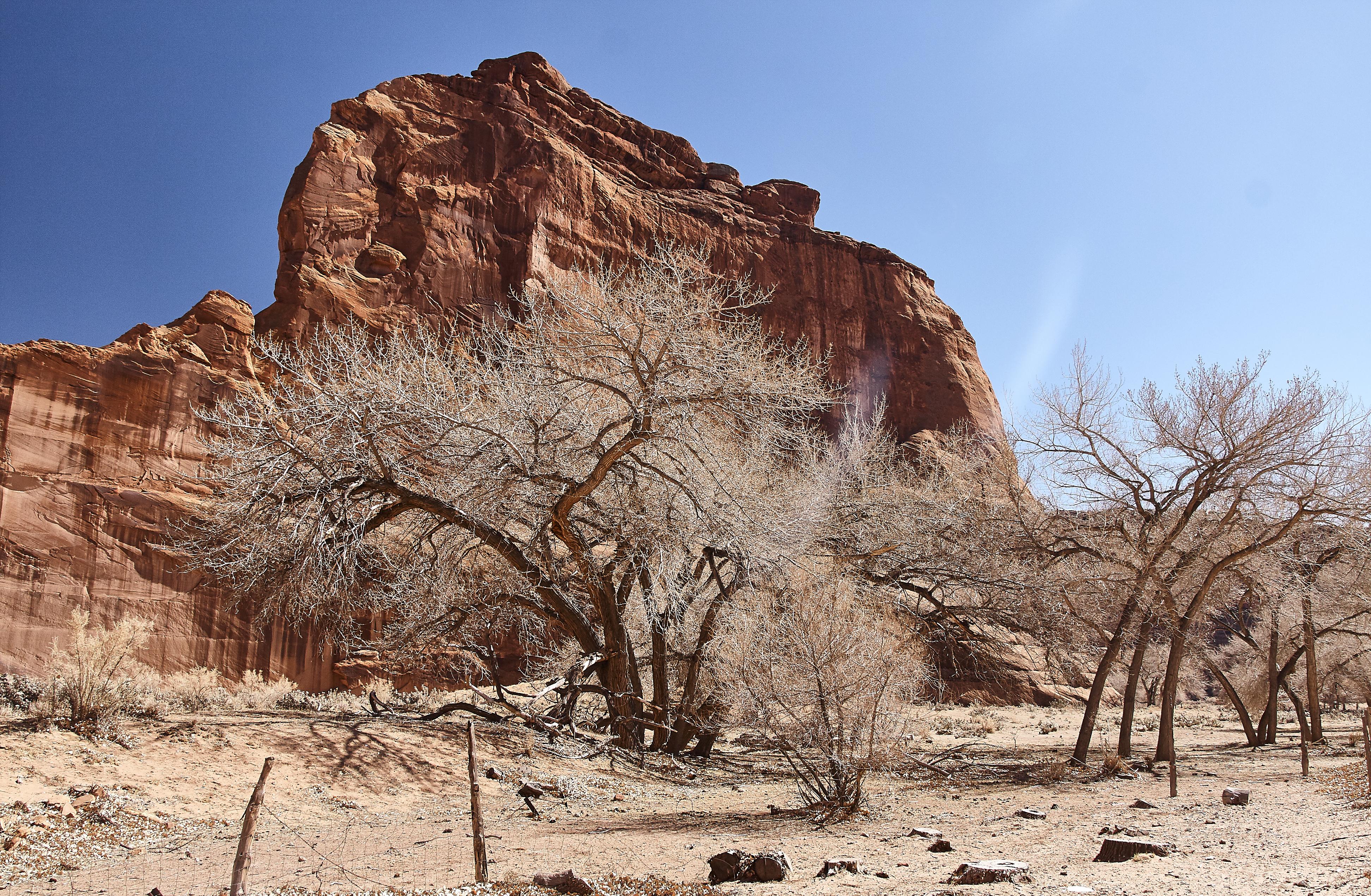 Canyon de Chelly - 32
