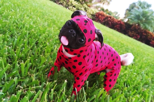 Cardi's Ladybug polkadot hood Onesie