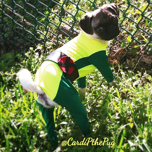 Cardi P's Version of X-Men Rogue Cosplay Halloween Costume