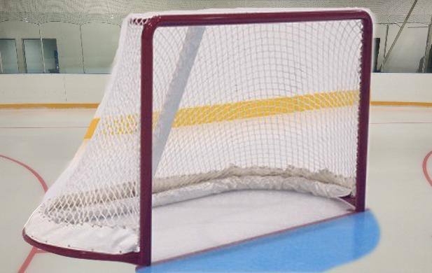 Professional Goal Frames