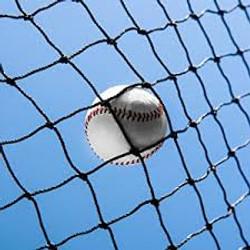 Baseball Protective Netting