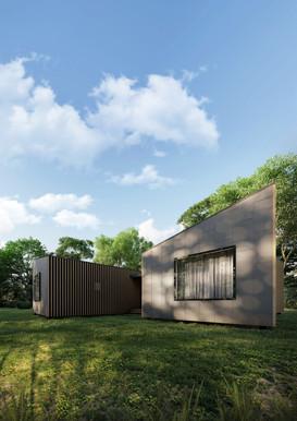 Small house visuals. Scandianvia.
