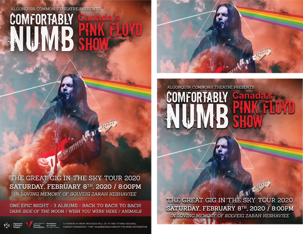 Comfortably Numb - Canada's Pink Floyd S