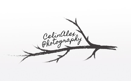 CelinAlex Watermark - Mockup.jpg