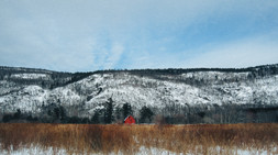 Red Barn-2.jpg