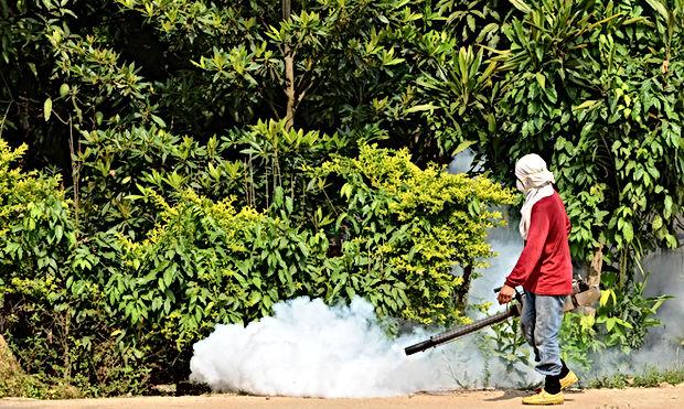 e-learning Zika andDengue fever