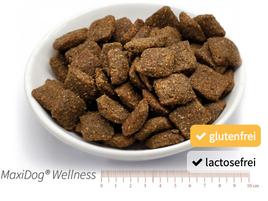 Alleinfuttermittel - Das ideale Futter für den athletischen Hund, der Rind und Getreide nicht verträgt