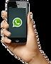 mao-whatsapp-205x260.png