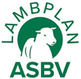 Lambplan ASBV