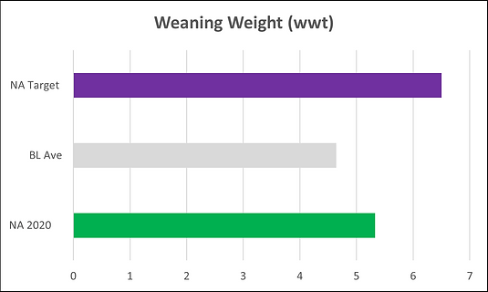 Weining Weight.png