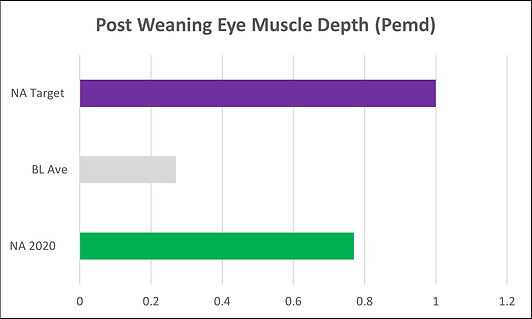 Post Weaning Eye Muscle Depth.png