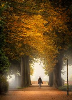 DerHamburger_DasBuch_Herbst_Stadtpark_MatthiasPlander.jpg