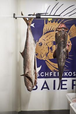 DH1904_Populär_Fischfeinkost_Baier_315_w