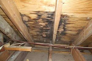 roof-leak-repair