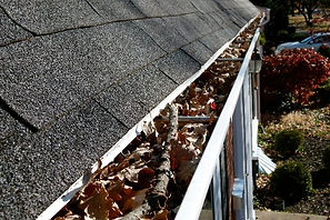 cleaning-roof-gutters.jpg