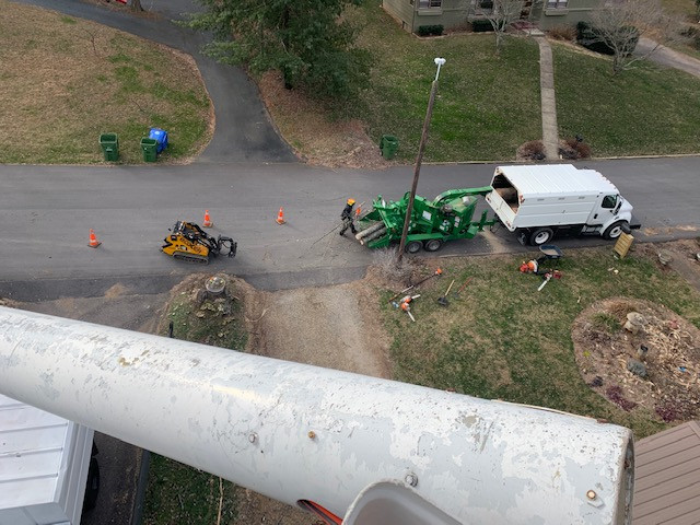 View from Bucket Truck