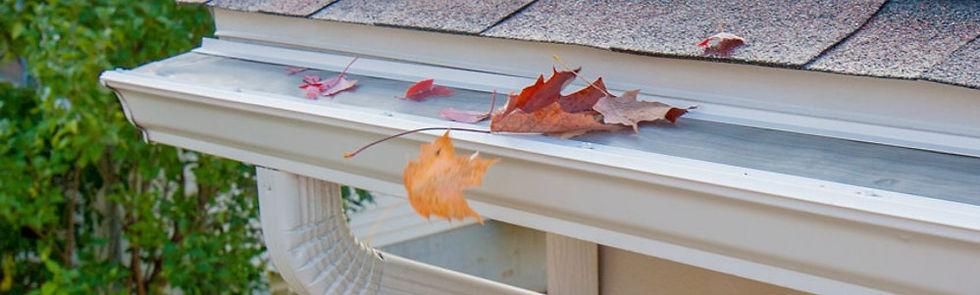 LeafFilter-Asheville-1C.jpg