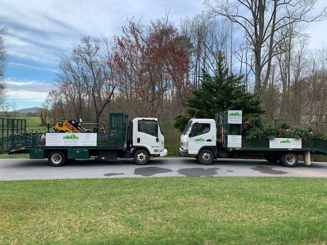 Asheville Landscaping and Tree Service