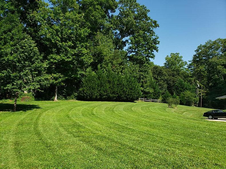 beautiful-green-lawn-asheville.jpg