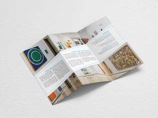 Albright-Knox Brochure