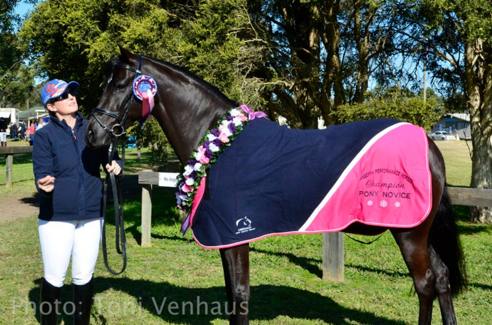 EURO PANEL TROPHY HORS RUG NAVY PINK