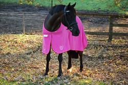 TOWEL HORSE RUGS PINK