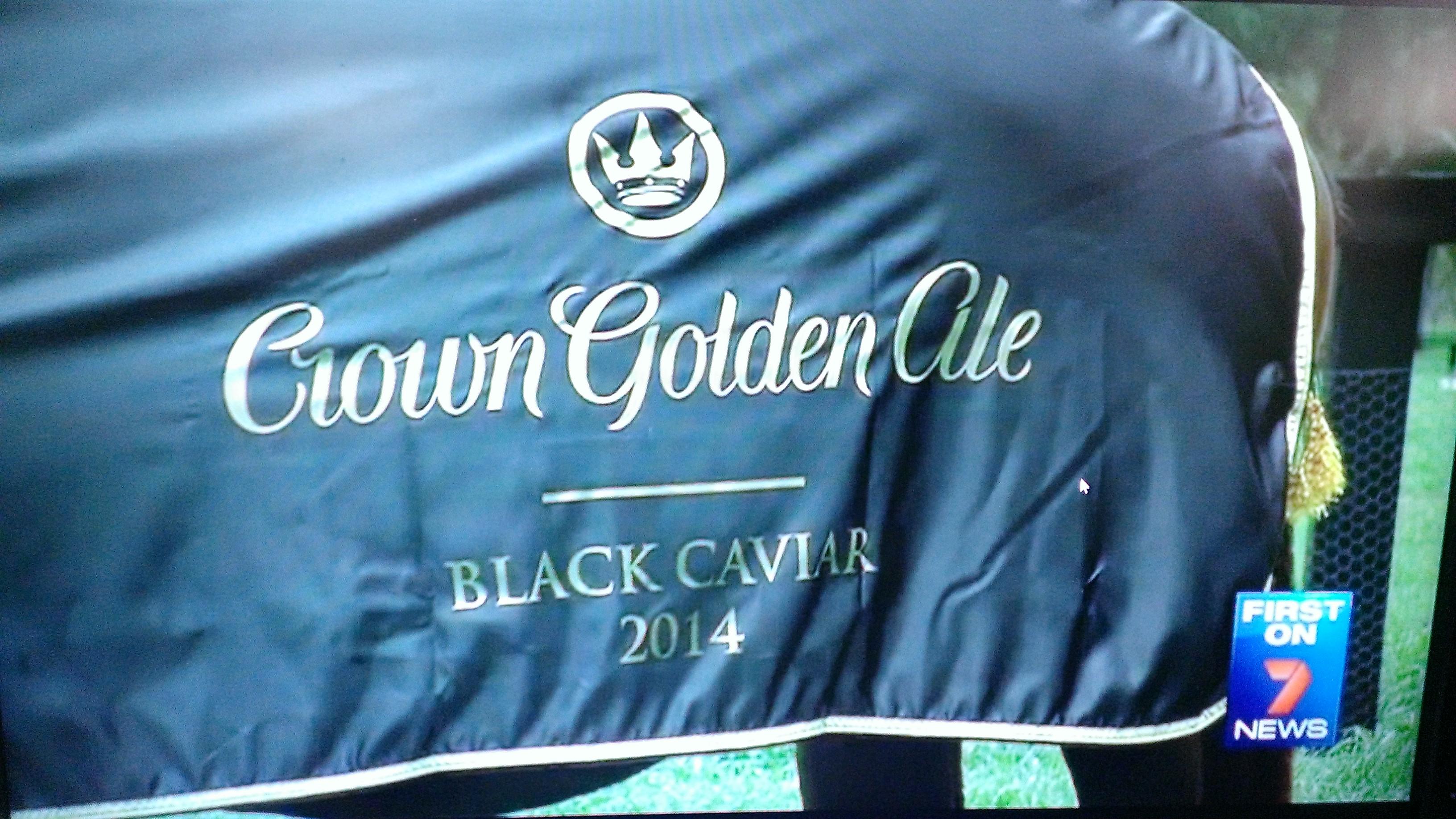 BLACK CAVIAR HORSE RUGS