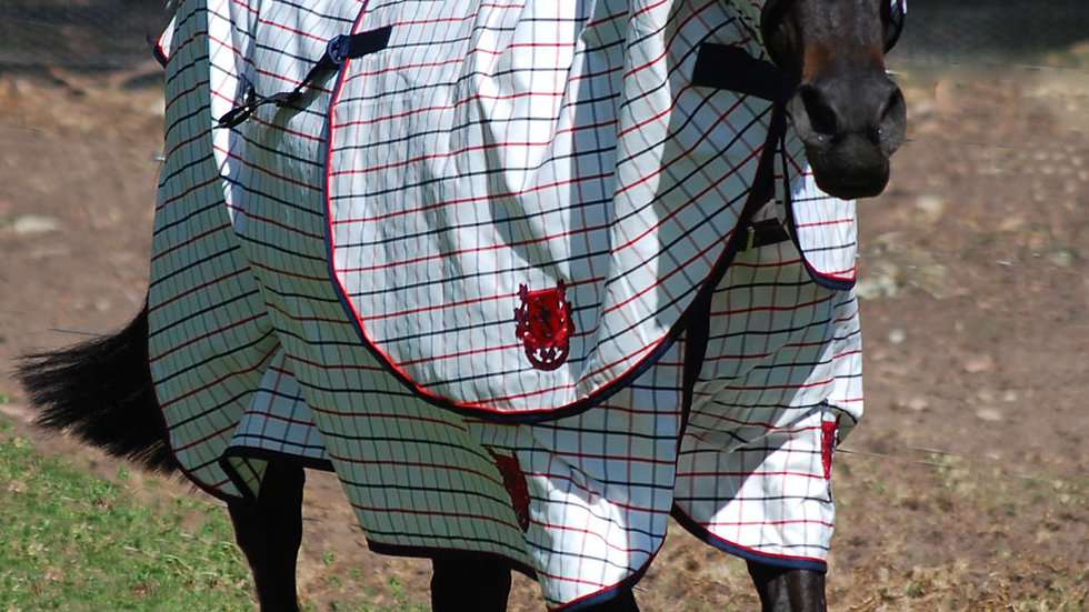 STABLE 8 SHOW SET COLLARCHECK NAVY/RED