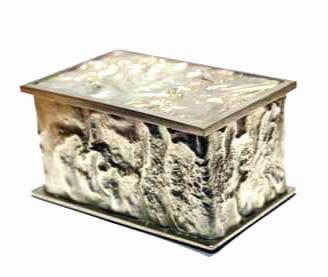 Reticulated silver box