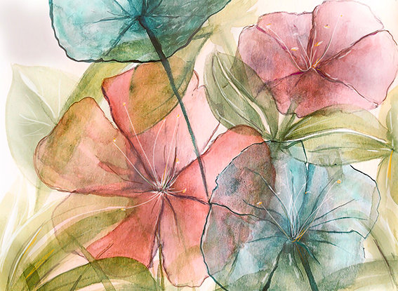 TRANSLUCED FLOWERS / FLORES TRANSLUCIDAS
