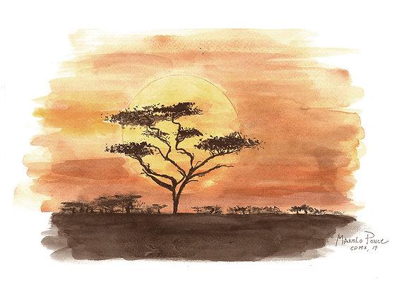 AFRICA ATARDECER / AFRICA SUNSET