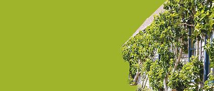 áreas verdes retangulo.jpg