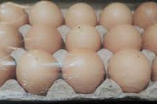 Huevo fresco  15 pz