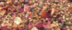 New Tantra Image.jpg