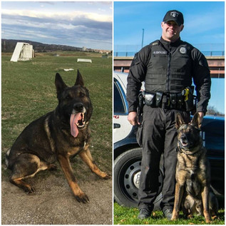 K-9 Lord and Sergeant Cataldo